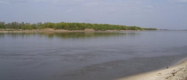 вертячий дон рыбалка видео